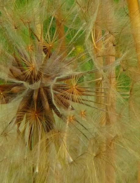 Judi Castille Clock Flowers detail