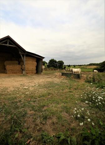 Judi Castille The Hay Barn