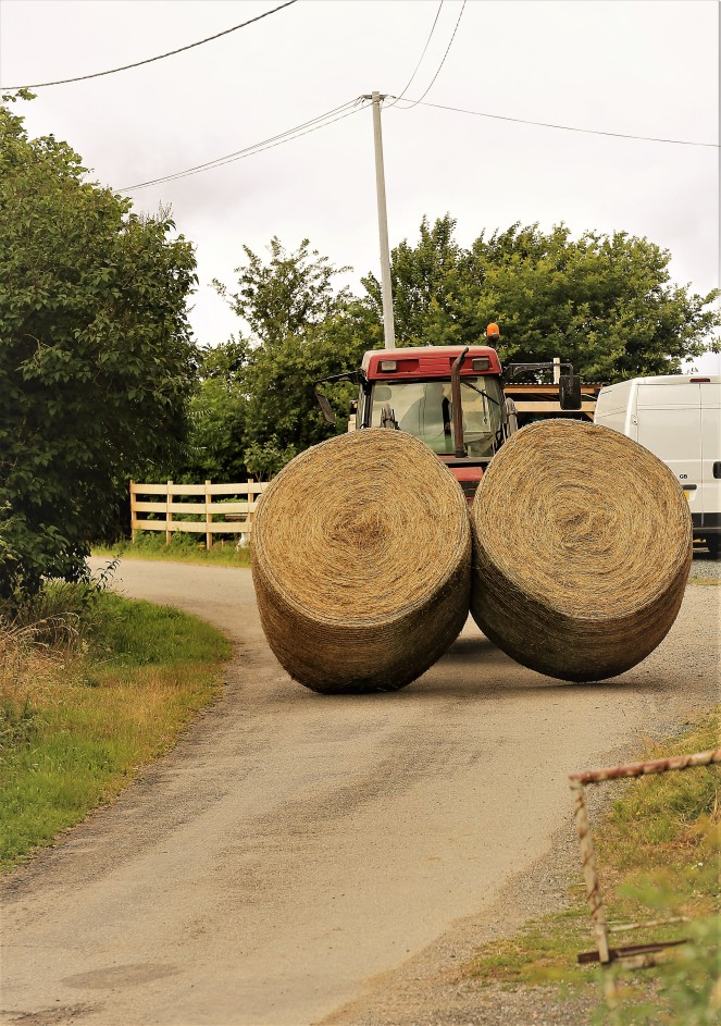 Judi Castille Bringing in the hay bales