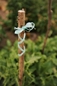 Judi Castille Dragonfly sticks