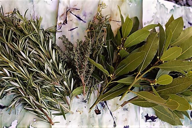Judi-Castille-Dried-herbs