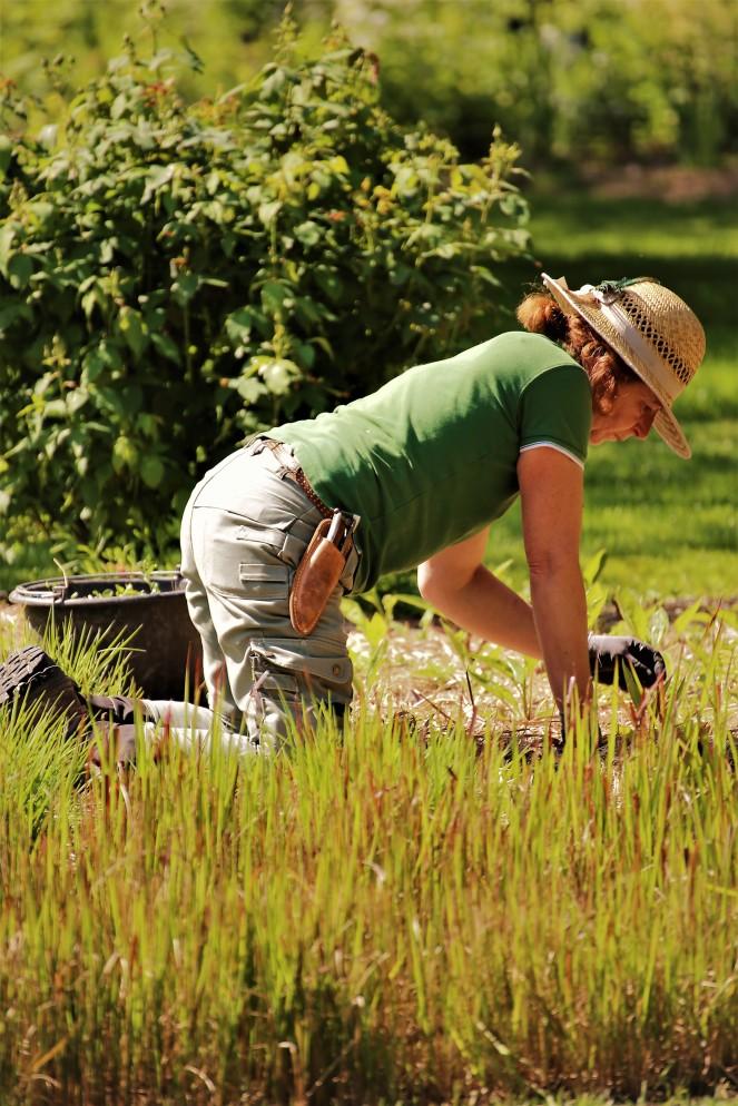 Judi Castille Chateau De Rivau lady gardener