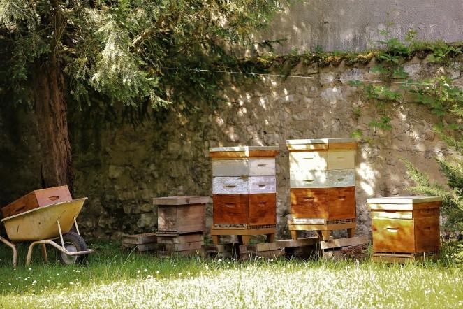 Judi Castille Chateau Du Rivau bee hives
