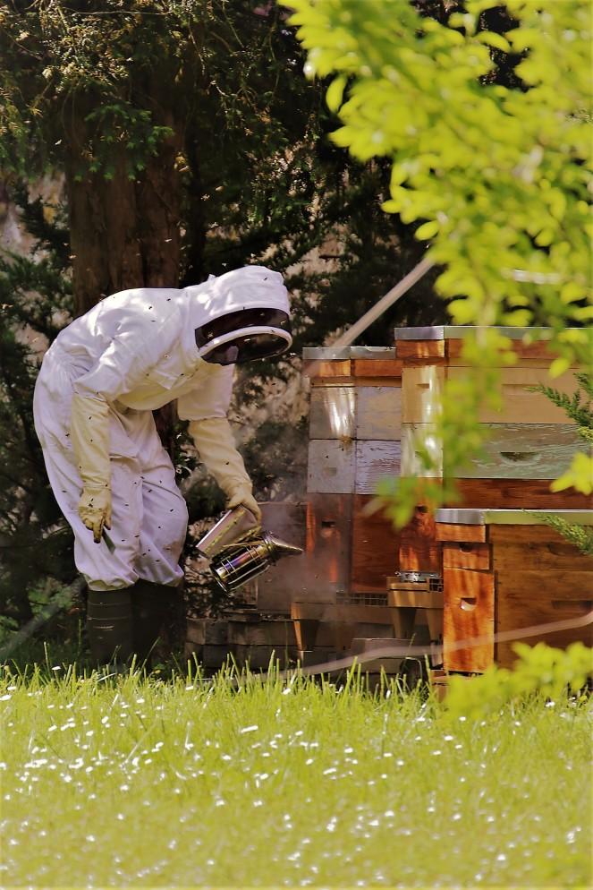 Judi Castille Chateau Du Rivau beekeeper