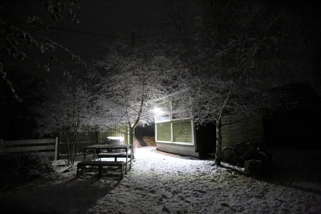 Judi Castille - snow fell