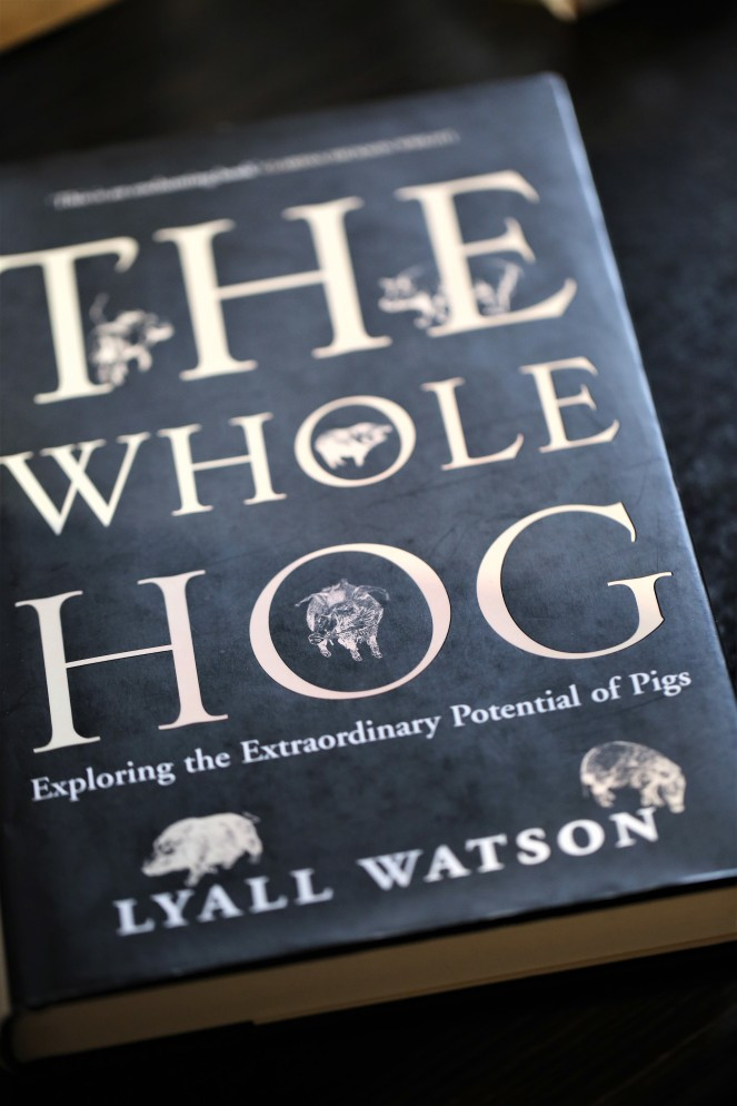 Judi Castille Book the Whole Hog