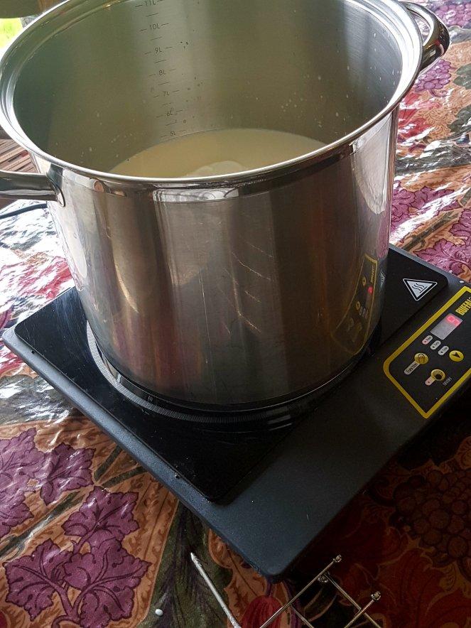 Judi Castille cheesemaking .jpg